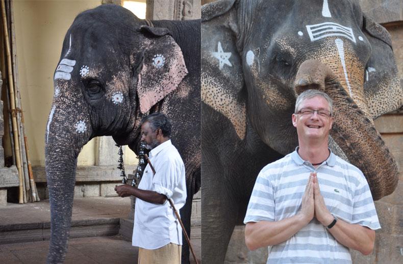 diapo-inde-sud-elephant