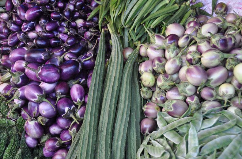 diapo-inde-sud-legumes