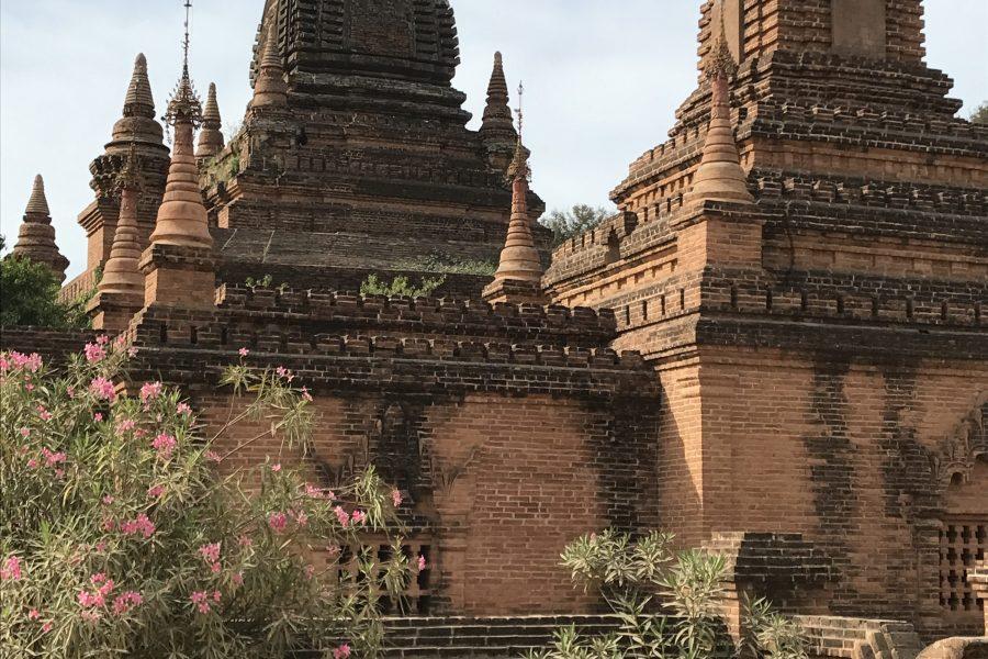 Extraordinaire cette plaine de Bagan