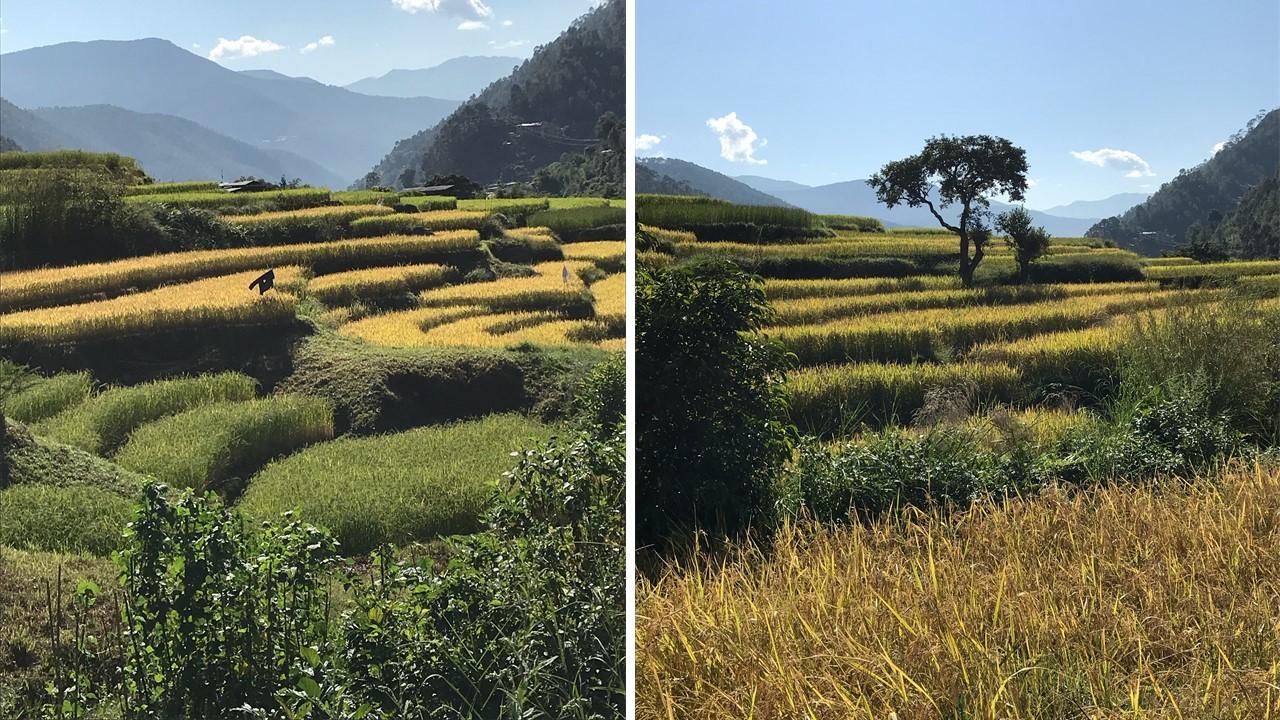 Découvrir le Bhoutan : le pays du bonheur